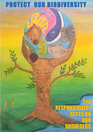 protection of biodiversity gallery our actions tunza eco  protection of biodiversity is our responsibility