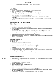 Social Coordinator Resume Samples | Velvet Jobs