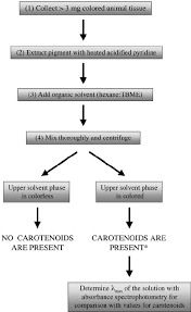 Flow Diagram Of Biochemical Procedures For Identifying The