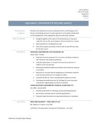 Underwriting Resume Examples Underwriter Resume Sample Ajrhinestonejewelry 15