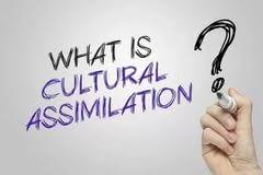 assimilation essay descriptive essay about an object assimilation essay