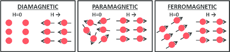 Schematic Representation Of Diamagnetic Paramagnetic And