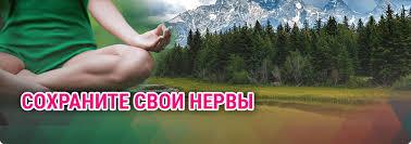 Дипломные курсовые работы на заказ в Казани в Дипломник