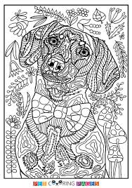 Free Printable Dachshund Coloring Page Available For Download