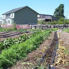 farm and garden supply. Fine Farm Amherst Farmers Supply Intended Farm And Garden R
