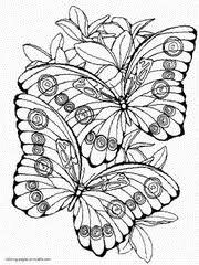 Butterfly Coloring Pages Free Printable Pictures For Kids