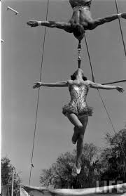 best ideas about florida state university circus girls of florida state university 1952