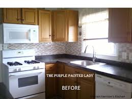 slide1 purple painted lady chalk paint