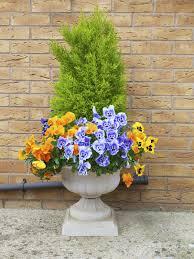 Best 25 Winter Porch Ideas On Pinterest  Christmas Porch Container Garden Ideas For Winter
