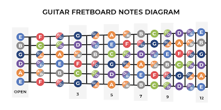 Guitar Notes Chart How To Learn The Fretboard Guitar Fretboard Diagram