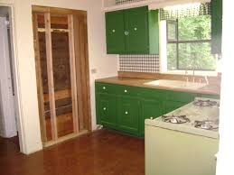 Designing A New Kitchen Layout Interior Delectable Kitchen Designs With Oak Cabinets Retro Small