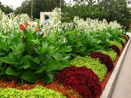 File:Main flowerbeds in Kolomenskoye 02.JPG
