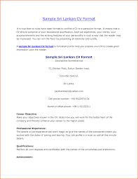 resume pattern of resume inspiring printable pattern of resume