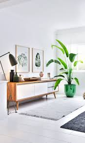 Best 25+ Plants in living room ideas on Pinterest | Living room ...