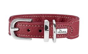 <b>Hunter ошейник</b> для собак Cannes <b>Mini</b> 32 (23-28)/2,5 см ...