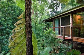 Treehouse  Montville QLD  Favorite Places U0026 Spaces  Pinterest Treehouse Montville