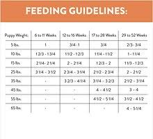 Puppy Food Feeding Chart Nutro Ultra Puppy Dry Dog Food 15 Lb Bag Chewy Com