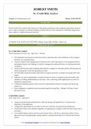 Credit Analyst Resume Objective