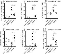 Adaptive Immune Responses To Zika Virus Are Important For