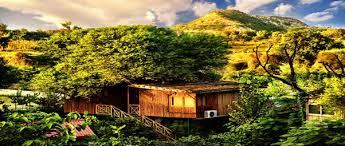 tree house resort. Tree House Cottages, Jaipur Resort