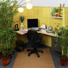 plants for office cubicle. Inspiring Office Cubicle Decoration Full In Town : Relaxing With Real Green Plants For E