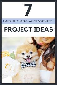 7 diy dog project ideas