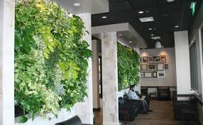 informal green wall indoors. Green Walls Improve Air Quality. Informal Wall Indoors
