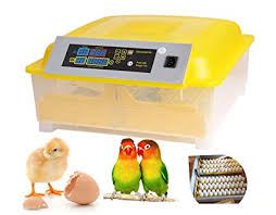 Aceshin Automatic 48 Digital Egg Incubator Turning Temperature Control Poultry Hatcher For Chickens Ducks Goose Birds Us Stock