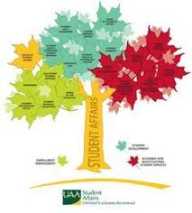 Collaborative Org Chart Student Affairs Tree A Twist On The Whole Organizational