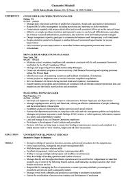 Operations Manager Resume Examples Bank Operations Manager Resume Samples Velvet Jobs Operations 32