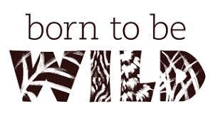 Afbeeldingsresultaat voor Born to be wild
