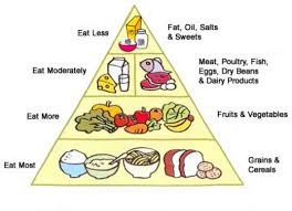 Diet Chart For Obese Person The Anti Obesity Diet
