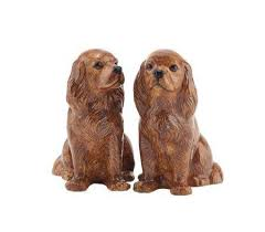 quail ceramics cavalier king charles spaniel salt and pepper ruby