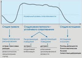 Реферат Психофизиологический механизм стресса ru Динамика развития стресса