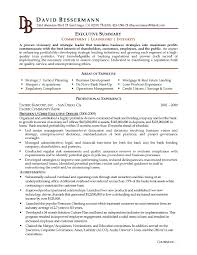 Resume Summary For Customer Service Elegant It Executive Resume