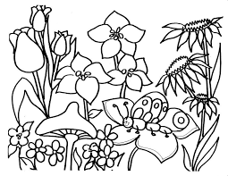 Spring Flowers Coloring Pages Realistic Flower Coloring Pages