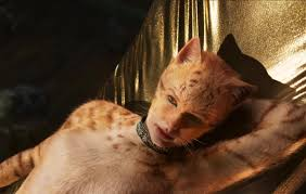 Hé lộ profile của từng thành viên trong gia tộc mèo toàn sao khủng ở Cats Những  Chú Mèo - Phim Âu Mỹ - Việt Giải Trí