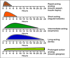 Insulin Derivative An Overview Sciencedirect Topics