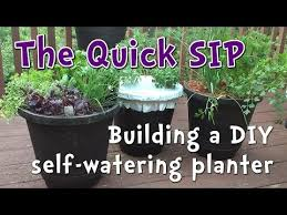 5 minute diy self watering container garden perfect for beginner gardeners and small spaces