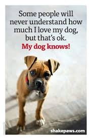 Dog Quotes Love Amazing Boxer Energetic And Funny Mans Best Friend Pinterest Dog