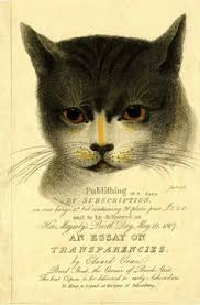 a rainy day black cats cat and rain advertisement for subscriptions for an essay on transparencies by edward orme a cat s head its eyes varnished so that they glow when held to the