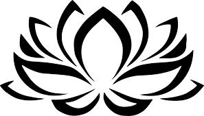 nelumbo nucifera drawing flower black and white