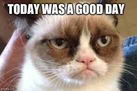 Memes Vault Angry Cat Memes No via Relatably.com