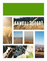 finance report templates free annual report templates examples 6 free templates
