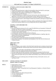 Director Audit Resume Samples Velvet Jobs