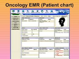Electronic Patient Chart Overview Of Electronic Medical Records Sanjoy Sanyal