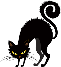 scared black cat clipart.  Clipart Fotor Halloween Clip Art  Online For Free On Scared Black Cat Clipart Library