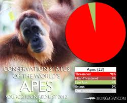 Chart The Worlds Most Endangered Apes