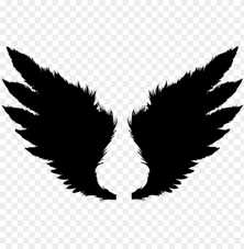 bird wings png hd png image with