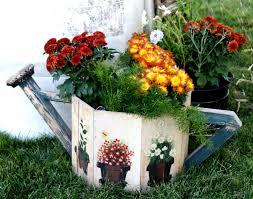 Resultado de imagen para crisantemos